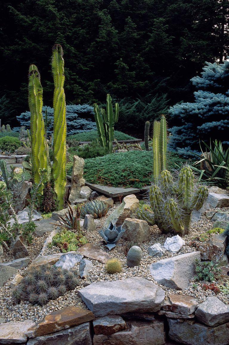 6 Best Rock Garden Ideas - Yard Landscaping with Rocks on Backyard Rock Garden Ideas id=54050