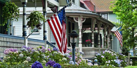 Flag, Plant, Flag of the united states, Shrub, Flower, Garden, Real estate, Home, House, Pole,
