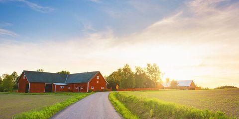 Nature, Grass, Natural landscape, Cloud, Farm, Landscape, Plain, Land lot, Atmosphere, Field,