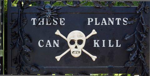 Bone, Skull, Font, Iron, Symmetry, Circle, Symbol, Anthropology, Skeleton, Octopus,