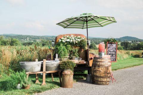 Plant, Umbrella, Rural area, Grass family, Groundcover, Shade, Tar, Plantation, Village, Outdoor table,