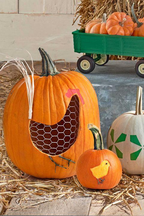 40 Easy Pumpkin Carving Ideas Fun Patterns Designs For 40 Adorable Animal Pumpkin Carving Patterns