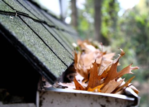 leaf gutters