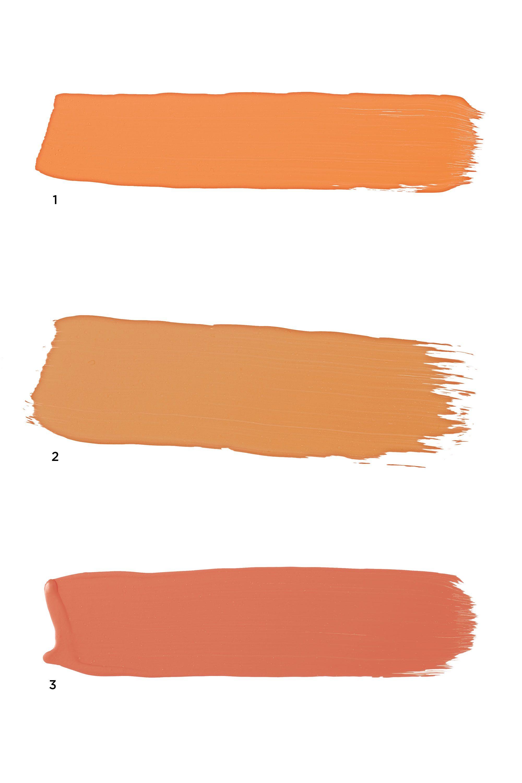 Orange Paint Colors Home Accessories