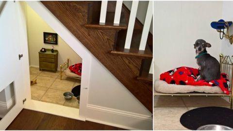 image - Flooring For Dog Room