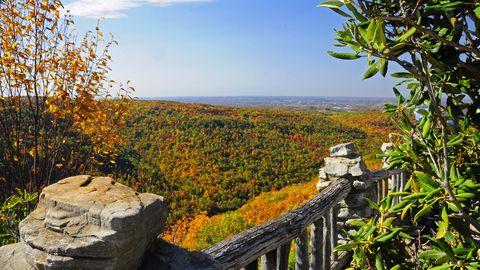 Natural landscape, Plant community, Bedrock, Nature reserve, Prairie, Wildflower, Outcrop, Chaparral, Fence, Shrubland,