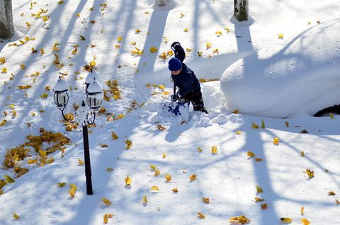 Winter, People in nature, Snow, Petal, Freezing, Precipitation, Plant stem, Playing in the snow, Ice cap, Glacial landform,