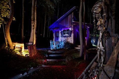 Night, Darkness, Trunk, Garden, Midnight, Yard, Backyard, Landscape lighting, Landscaping, Bench,