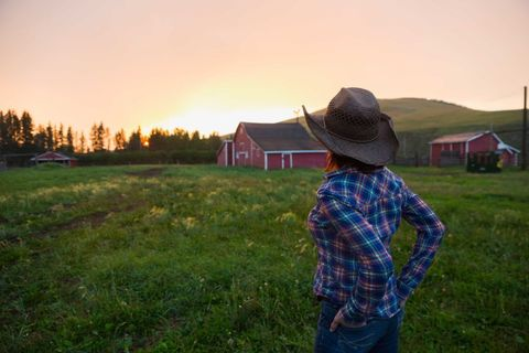 Human, Hat, Plaid, Farm, Grassland, Rural area, Plain, Land lot, Pasture, Tartan,