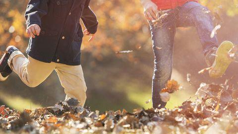 Human, People in nature, Jacket, Autumn,
