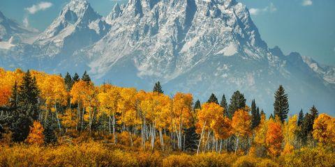 Mountainous landforms, Sky, Natural environment, Natural landscape, Mountain range, Leaf, Plant community, Deciduous, Tree, Mountain,