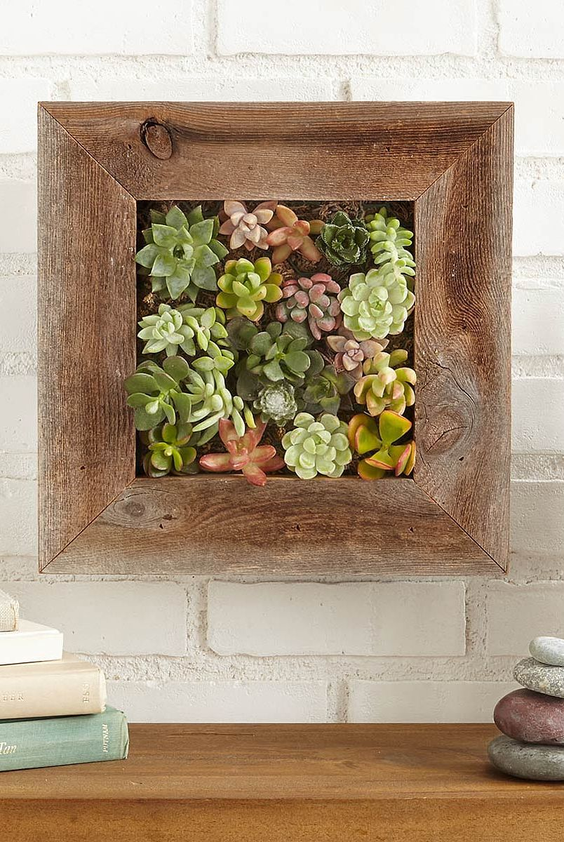 gifts for crafters diy succulent frame