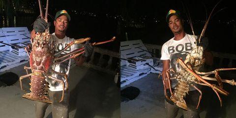 Cap, Music artist, Wind instrument, Baseball cap, Brass instrument, Fish, Python,