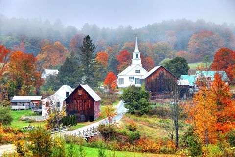 Nature, Leaf, Sky, Atmospheric phenomenon, Tree, Natural landscape, Autumn, House, Rural area, Home,