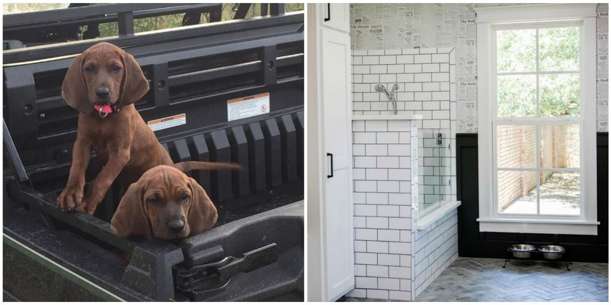Joanna Gaines Designed A Doggie Spa And You 39 Re Going To