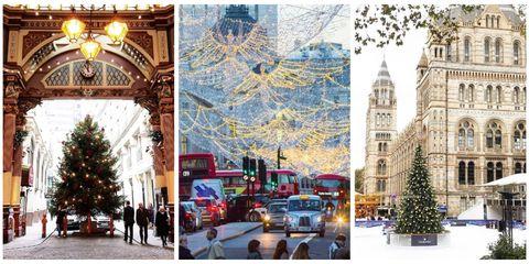 Winter, Christmas decoration, Woody plant, Holiday, Christmas, Christmas eve, Bus, Christmas tree, Evergreen, Christmas lights,