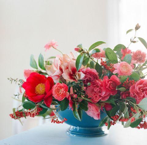 Petal, Flower, Bouquet, Red, Pink, Flowering plant, Floristry, Cut flowers, Flower Arranging, Rose family,