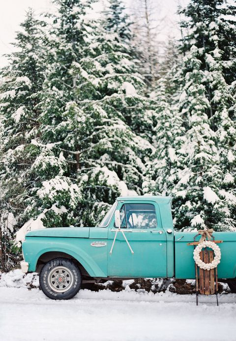 Motor vehicle, Winter, Blue, Green, Automotive design, Branch, Vehicle, Automotive exterior, Freezing, Automotive tire,
