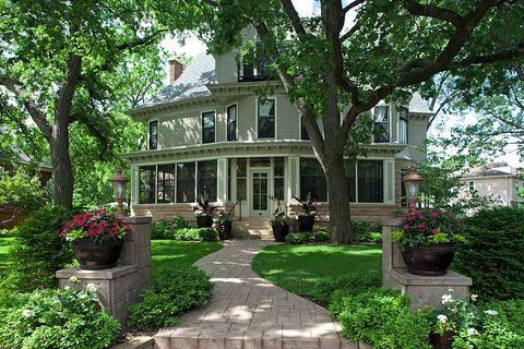 Plant, Window, Flowerpot, Property, House, Garden, Tree, Shrub, Home, Door,