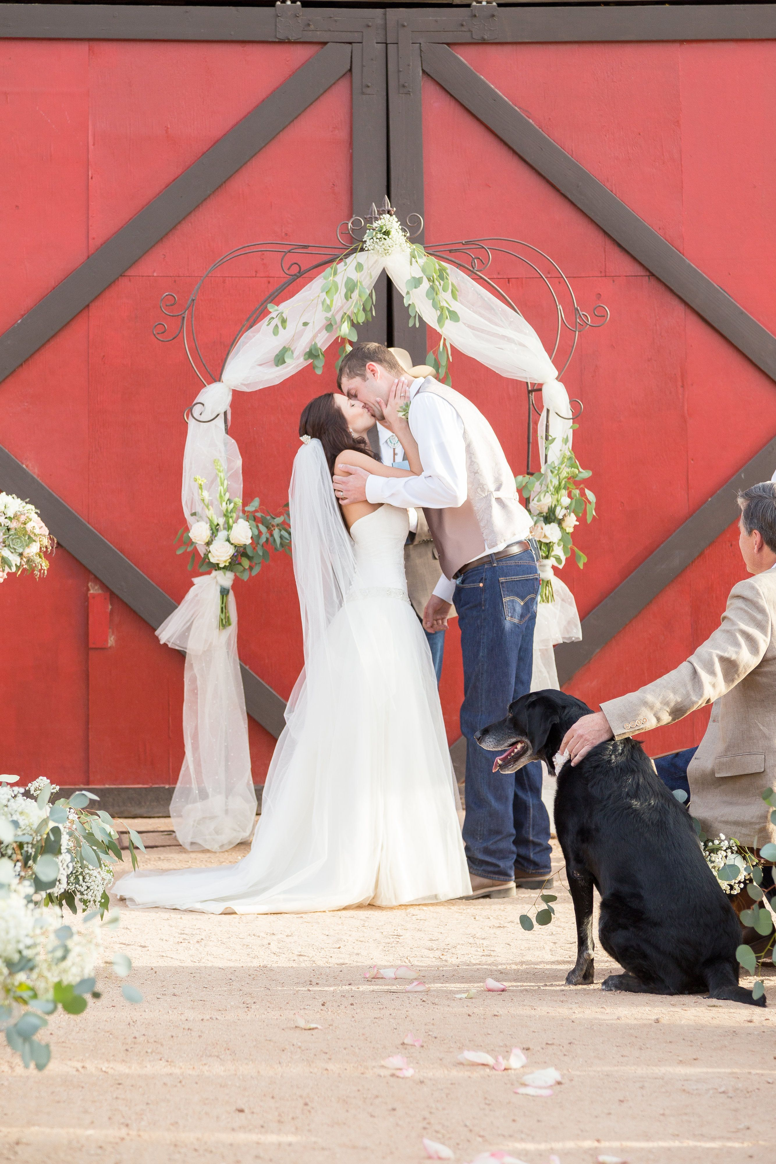 Dogs At Weddings How To Include Your Dog In Your Wedding