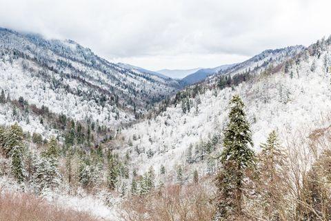 Mountainous landforms, Winter, Mountain, Freezing, Snow, Wilderness, Mountain range, Forest, Valley, Larch,