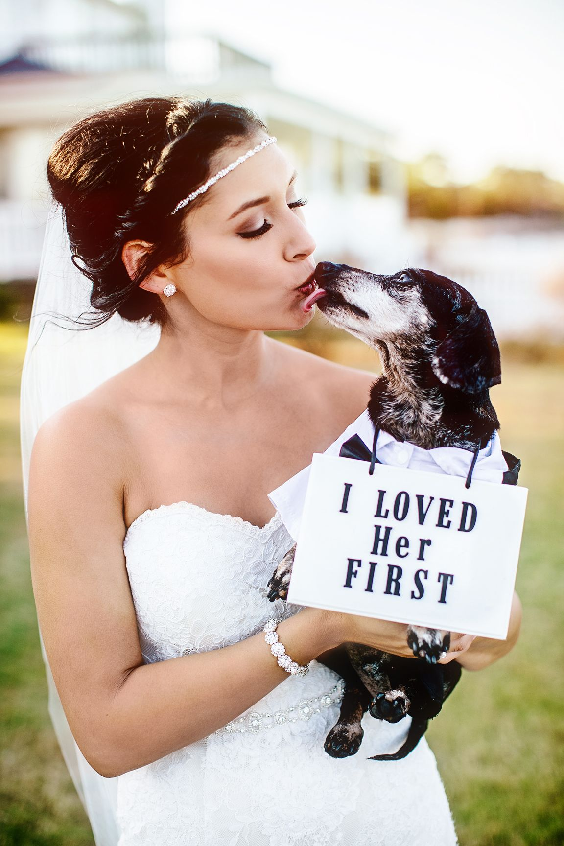 8 Best Dog Wedding Ideas - How to Include Your Dog in Your Wedding