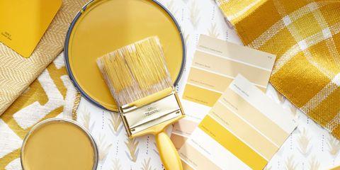Serveware, Yellow, Ingredient, Tableware, Drink, Dishware, Tea, Cup, Home accessories, Oil,