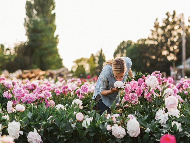 How To Grow Peonies How To Care For Peonies