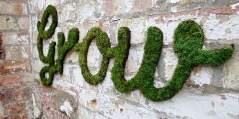 Wall, Brick, Font, Brickwork, Number, Stone wall, Symbol, Building material, Moss,