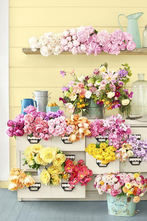 Yellow, Petal, Flower, Serveware, Pink, Purple, Cut flowers, Lavender, Flower Arranging, Floristry,