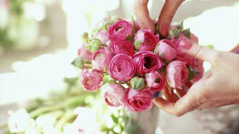 Pink, Flower, Flower Arranging, Hand, Bouquet, Petal, Floristry, Plant, Floral design, Cut flowers,