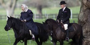 queen elizabeth riding horse