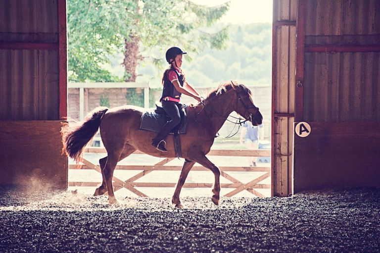 Horse Riding Can Make Your Child More Intelligent, Says Science