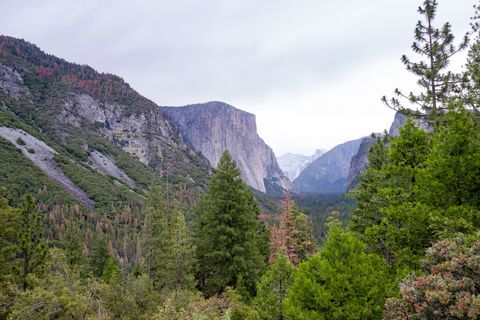 These are the 10 Deadliest National Parks in the U S