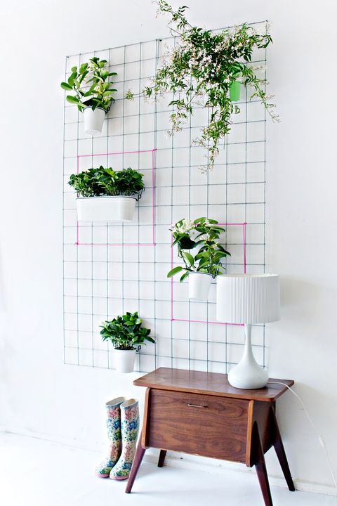 Diy Indoor Wall Vertical Garden