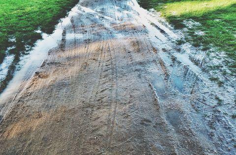 Grass, Road surface, Asphalt, Thoroughfare, Tar, Ditch, Field, Plantation,