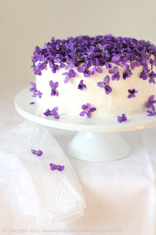 Amazing Ideas For Frosting Cakes