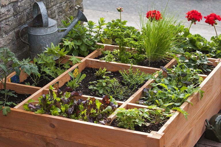 16 free garden design ideas and plans for Corner vegetable garden ideas