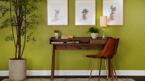 Verde, Sala, Design de interiores, Parede, Vaso de flores, Móveis, Mesa, Piso, Design de interiores, Pisos,