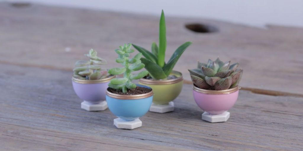These Diy Succulent Planters Are Actually Made Of Plastic