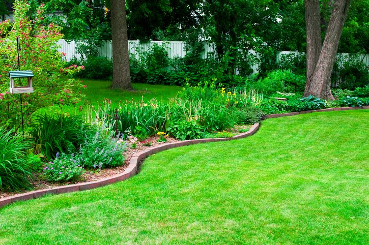 14 Cheap Landscaping Ideas