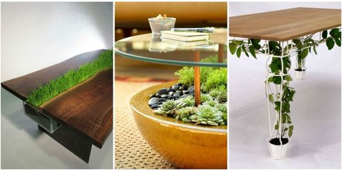 Flowerpot, Table, Room, Plant, Furniture, Herb, Coffee table, Interior design, Houseplant,