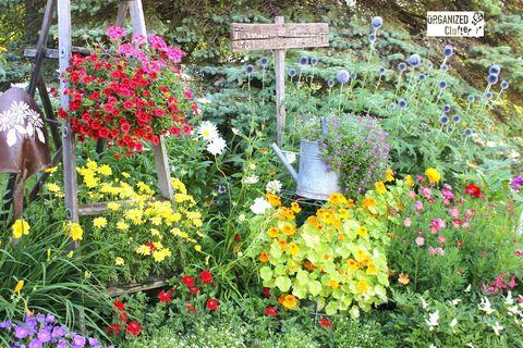 junk gardening tour