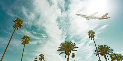 Sky, Daytime, Airplane, Aircraft, Cloud, Airliner, Air travel, Arecales, Woody plant, Airline,