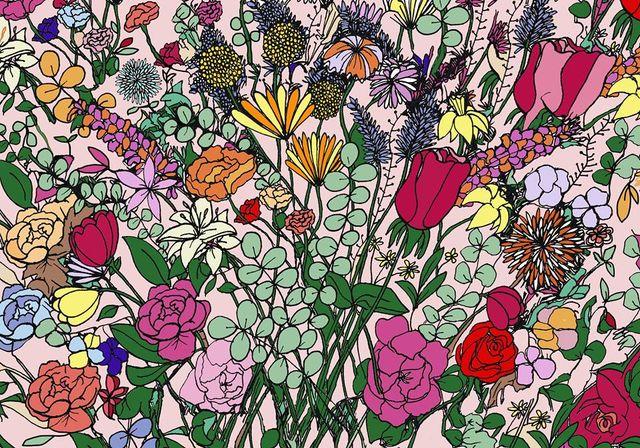 Pattern, Colorfulness, Pink, Petal, Orange, Art, Magenta, Botany, Flowering plant, Floral design,