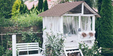 Plant, Flowerpot, Garden, Shrub, Backyard, Yard, Groundcover, Gazebo, Landscaping, Houseplant,