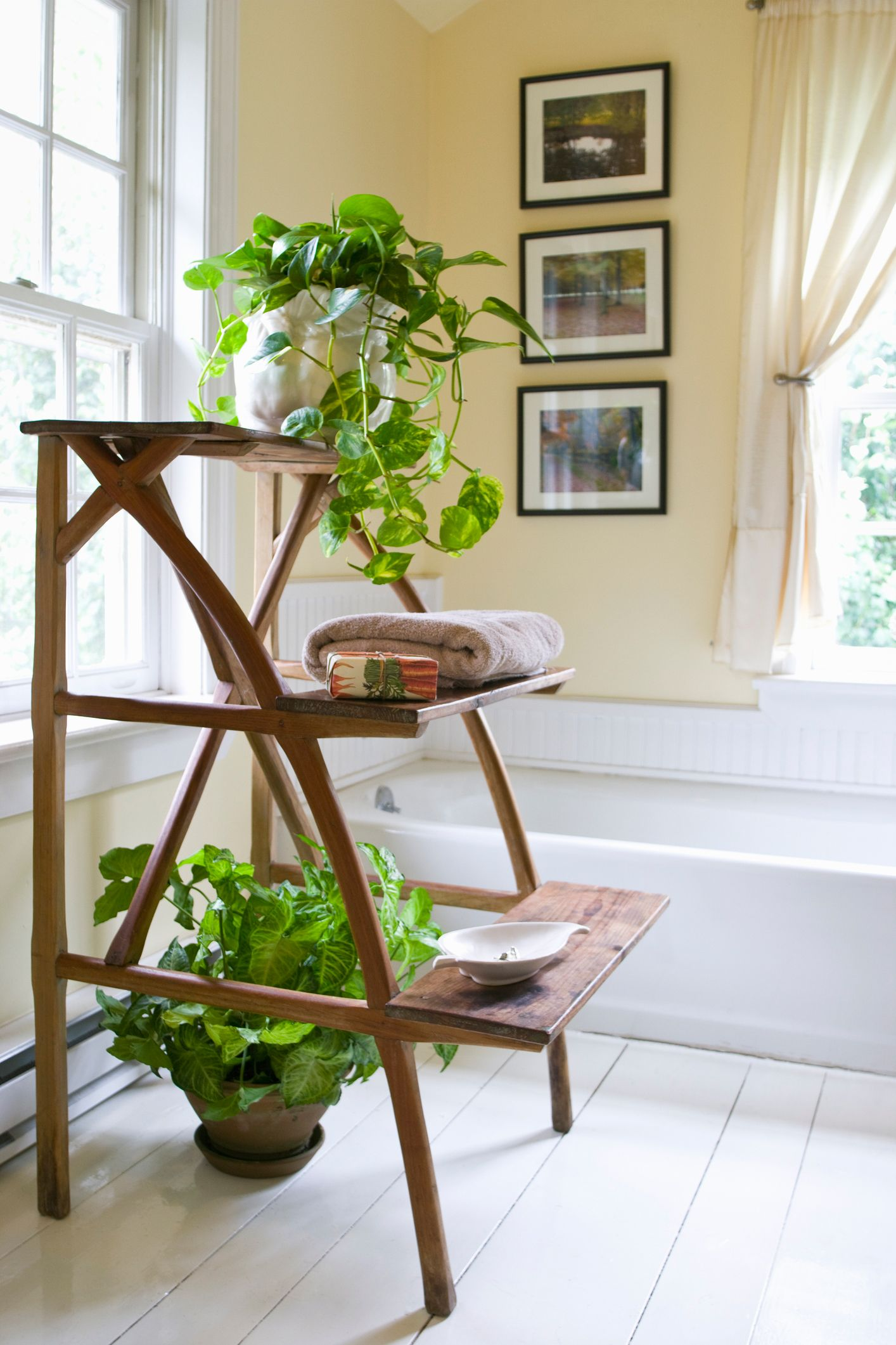 Bathroom Plants Part - 43: Country Living Magazine