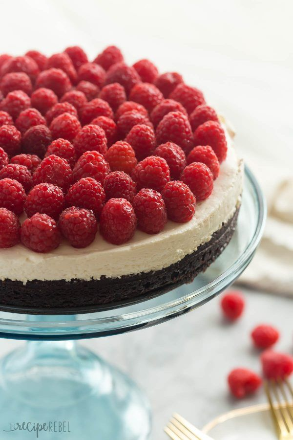 36 Best No Bake Cheesecake Recipes How To Make Raw Cheesecake