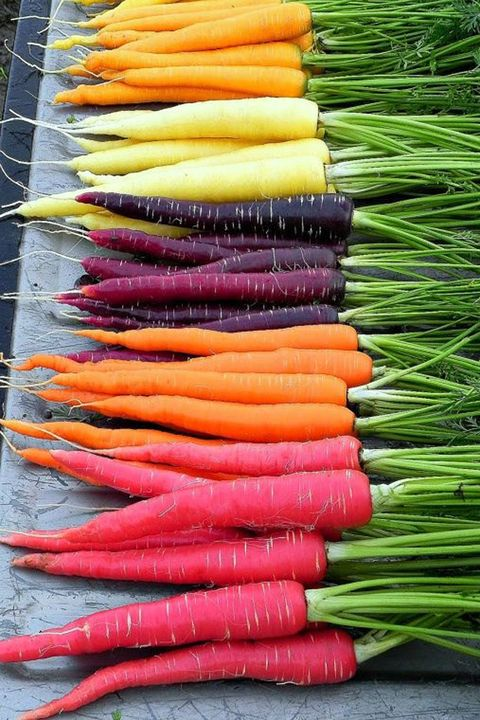 Whole food, Root vegetable, Local food, Vegetable, Natural foods, Vegan nutrition, Produce, Carrot, Ingredient, Leaf vegetable,