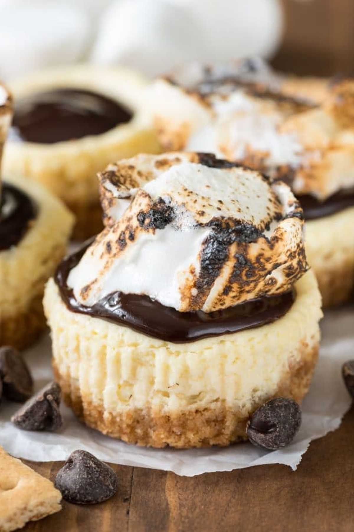Mini Cheesecakes with Sugared Pecans forecast